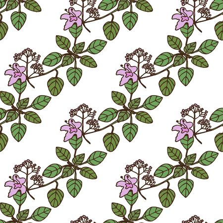 oregano: Elegant seamless pattern with hand drawn decorative oregano