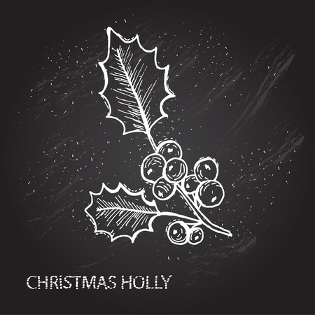 holly berry: Hand drawn decorative christmas holly, design element. Can be used for cards, invitations, gift wrap, print, scrapbooking. Christmas and New Year background. Chalkboard
