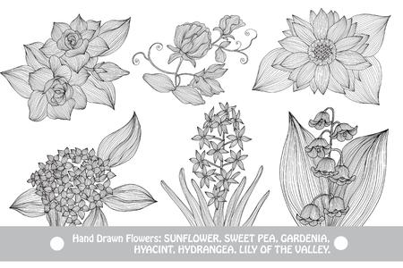 Elegant decoratieve bloemen, design elementen. Floral takken. Bloemendecoraties voor vintage bruiloft uitnodigingen, wenskaarten, banners Vector Illustratie