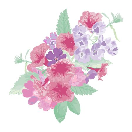 petunia: Elegant bouquet with verbena and petunia flowers, design element. Floral composition can be used for wedding, baby shower, mothers day, valentines day cards, invitations. Vector in watercolor style