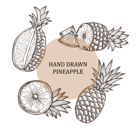 pine apple: Hand drawn decorative pineapple fruits, design elements. Can be used for cards, invitations, gift wrap, print, scrapbooking Illustration