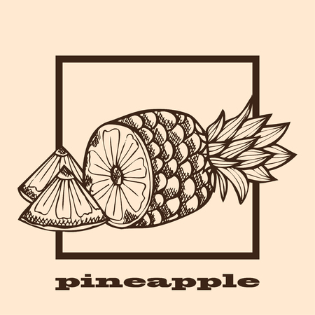 pine apple: Hand drawn decorative pineapple fruits, design elements. Can be used for cards, invitations, gift wrap, print, scrapbooking, labels, flyers, posters, menu. Food background. Fruit theme