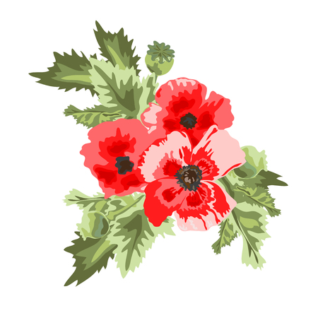 red poppy: Elegant bouquet with red poppy flowers, design element. Can be used for wedding, baby shower, mothers day, valentines day cards, invitations. All elements are editable. Vector in watercolor style