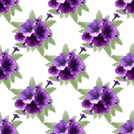 petunia: Elegant seamless pattern with hand drawn petunia flowers, design elements. Can be used for wedding invitations, greeting cards, scrapbooking, print, gift wrap, manufacturing. All elements are editable Illustration