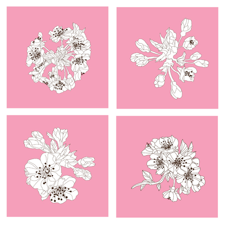 petal: Elegant hand drawn decorative cherry blossom flowers, design elements. Floral branches. Floral decorations for invitations, cards, posters, banners, print, scrapbooking, manufacturing. Vintage flowers