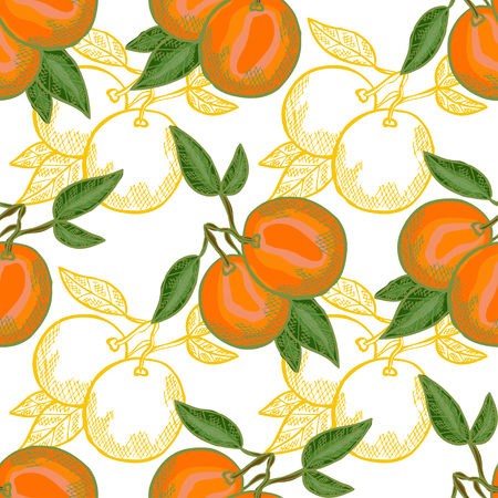 Elegant seamless pattern with hand drawn decorative orange fruits, design elements. Can be used for invitations, cards, scrapbooking, print, gift wrap, manufacturing. Food background. Editable