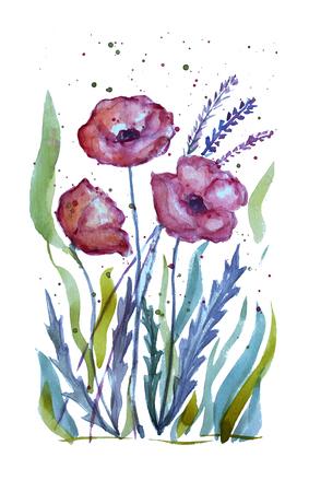装飾的な水彩赤いケシの花のクリップアート、デザイン要素。カード、招待状、バナー、ポスター、印刷デザインに使用できます。水彩花の背景