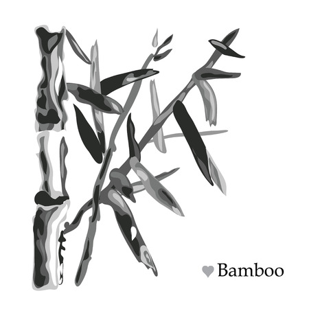 Decorative  bamboo plants, design elements. Can be used for cards, invitations, banners, posters, print design. Tropical background in watercolor style