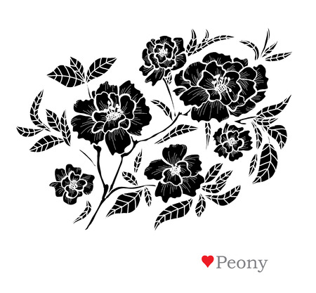 Decorative peony  flowers, design elements. Can be used for cards, invitations, banners, posters, print design. Floral background in line art style