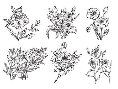 Decorative peony, lily, poppy  flowers, design elements. Can be used for cards, invitations, banners, posters, print design. Floral background in line art style