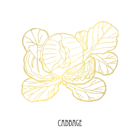 Hand drawn golden cabbage, design element. Can be used for cards, invitations, scrapbooking, print, fabric, manufacturing, food themes. Food theme. Golden vegetables