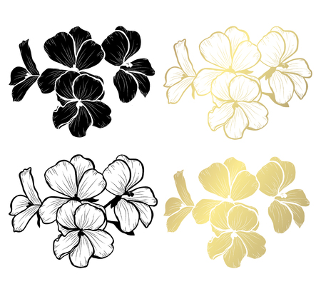 Decorative geranium flowers, design elements. Can be used for cards, invitations, banners, posters, print design. Golden flowers