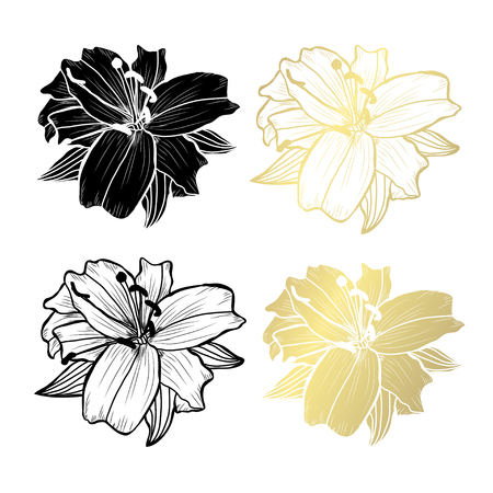 Decorative lily  flowers, design elements. Can be used for cards, invitations, banners, posters, print design. Golden flowers Ilustração