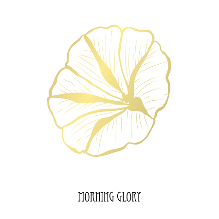 Decorative morning glory flower, design element. Can be used for cards, invitations, banners, posters, print design. Golden flowers Vettoriali