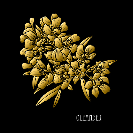 Decorative oleander flowers, design elements. Can be used for cards, invitations, banners, posters, print design. Golden flowers