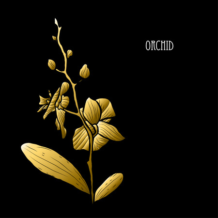 Decorative orchid flower, design element. Can be used for cards, invitations, banners, posters, print design. Golden flowers 矢量图像