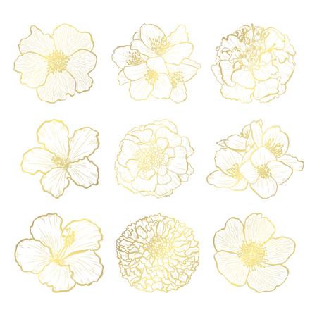 Dekorative handgezeichnete Blumen, Designelemente. Kann für Karten, Einladungen, Banner, Poster, Druckdesign verwendet werden. Goldene Blumen