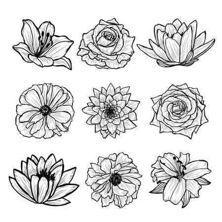 Zestaw ozdobny ręcznie rysowane kwiaty, elementy projektu. Może być używany do kart, zaproszeń, banerów, plakatów, projektów nadruków. Kwiatowe tło w stylu sztuki linii