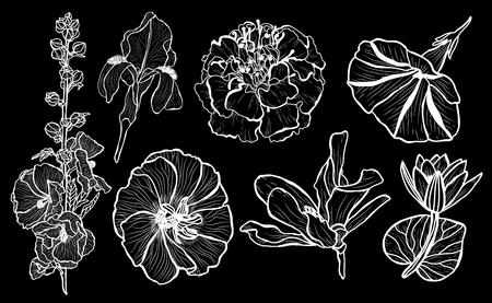 Ensemble de fleurs décoratives, éléments de conception. Peut être utilisé pour les cartes, les invitations, les bannières, les affiches, la conception imprimée. Fond floral dans le style d'art en ligne Vecteurs