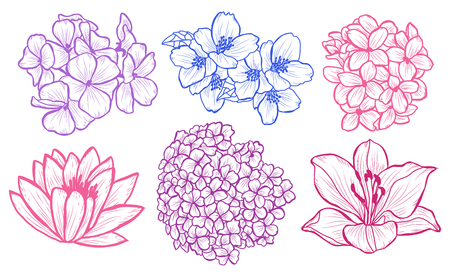 Decorative  flowers set, design elements. Can be used for cards, invitations, banners, posters, print design. Floral background in line art style