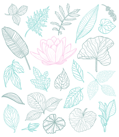 Decorative flowers and leaves set, design elements. Can be used for cards, invitations, banners, posters, print design. Floral background in line art style