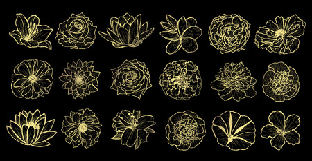 Decorative  flowers set, design elements. Can be used for cards, invitations, banners, posters, print design. Golden flowers