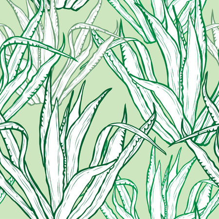 Elegant seamless pattern with agave plants, design elements. Floral  pattern for invitations, cards, print, gift wrap, manufacturing, textile, fabric, wallpapers. Succulents  イラスト・ベクター素材