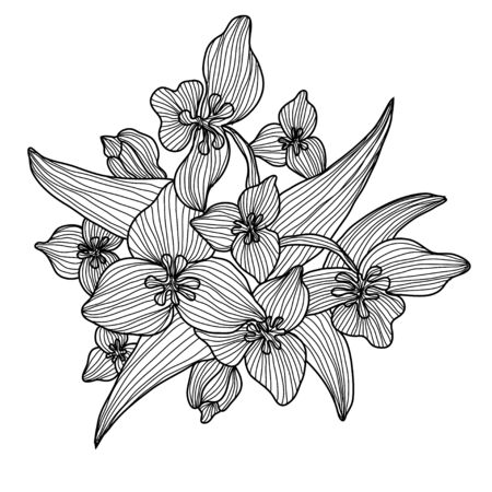 Decorative lily flowers, design elements. Can be used for cards, invitations, banners, posters, print design. Floral background in line art style Illustration