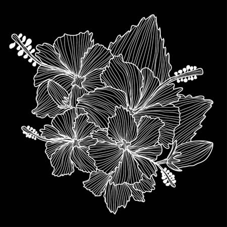 Decorative hibiscus flowers, design elements. Can be used for cards, invitations, banners, posters, print design. Floral background in line art style Stock Illustratie