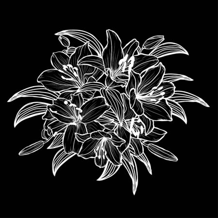 Decorative hand drawn lily  flowers, design elements. Can be used for cards, invitations, banners, posters, print design. Floral background in line art style Illustration