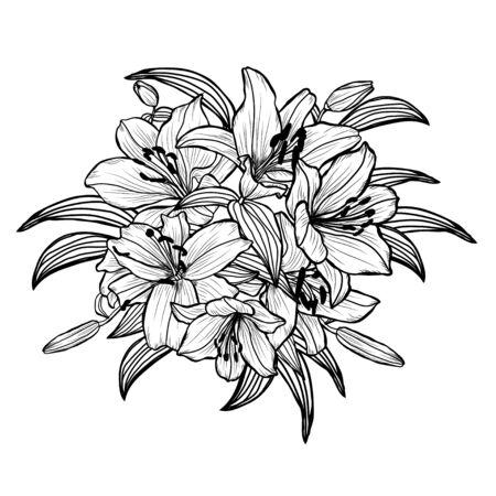 Flores de lirio decorativas dibujadas a mano, elementos de diseño. Se puede utilizar para tarjetas, invitaciones, pancartas, carteles, diseño de impresión. Fondo floral en estilo de arte lineal Ilustración de vector