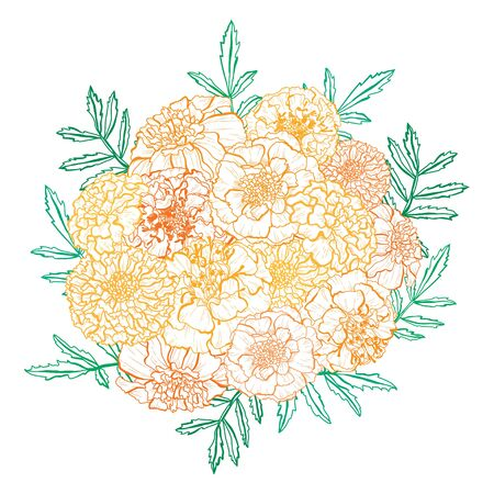 Decorative hand drawn marigold flowers, design elements. Can be used for cards, invitations, banners, posters, print design. Floral background in line art style Vettoriali