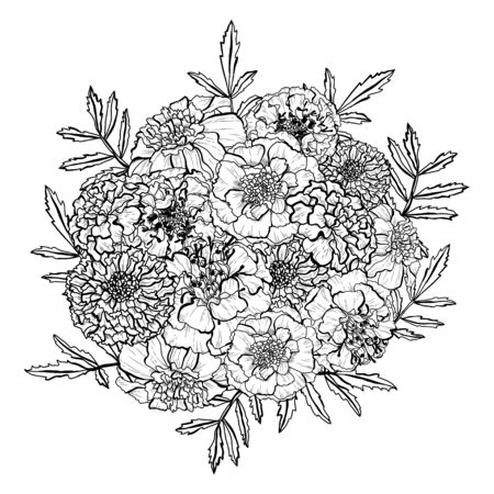 Decorative hand drawn marigold flowers, design elements. Can be used for cards, invitations, banners, posters, print design. Floral background in line art style Иллюстрация