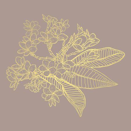 Fiori di plumeria dorati astratti decorativi, elementi di design. Può essere utilizzato per biglietti, inviti, banner, poster, design di stampa. Sfondo floreale dorato in stile arte linea