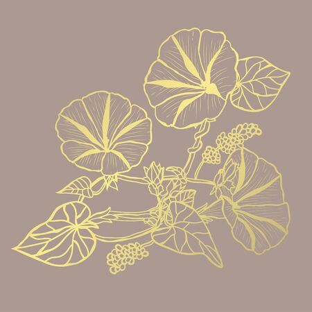 Decorative abstract golden morning glory flowers, design elements. Can be used for cards, invitations, banners, posters, print design. Golden floral  background in line art style