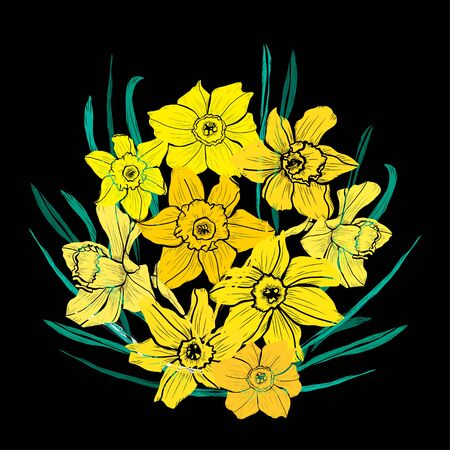 Decorative hand drawn daffodil  flowers, design elements. Can be used for cards, invitations, banners, posters, print design. Floral background in line art style Archivio Fotografico - 138202382