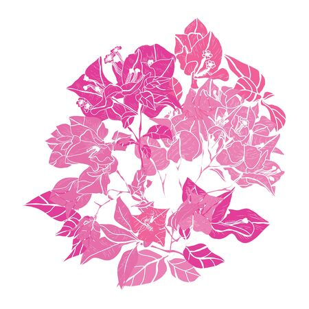Decorative hand drawn bougainvillea  flowers, design elements. Can be used for cards, invitations, banners, posters, print design. Floral background in line art style Archivio Fotografico - 138202090