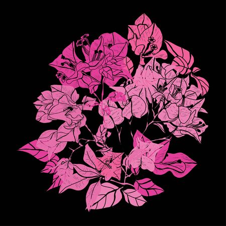 Decorative hand drawn bougainvillea  flowers, design elements. Can be used for cards, invitations, banners, posters, print design. Floral background in line art style
