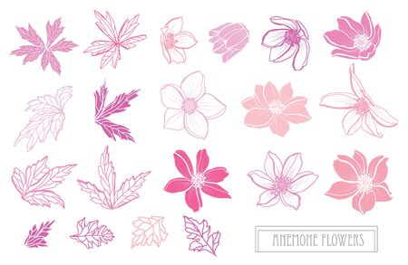Decorative hand drawn anemone flowers set, design elements. Can be used for cards, invitations, banners, posters, print design. Floral background in line art style Ilustracje wektorowe