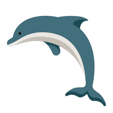 Dolphin vector illustration in flat color design