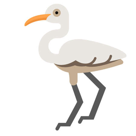 Egret vector illustration in flat color design