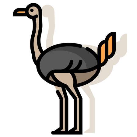Ostrich vector illustration in line color design Çizim