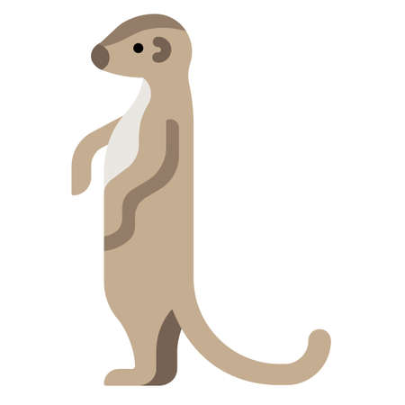Meerkat vector illustration in flat color design