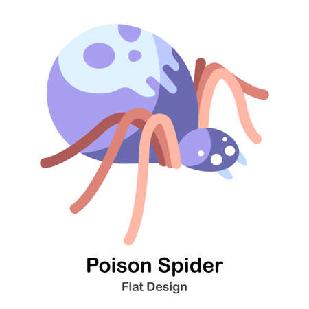 Purple spider with skull symbol flat color design vector illustration 矢量图像