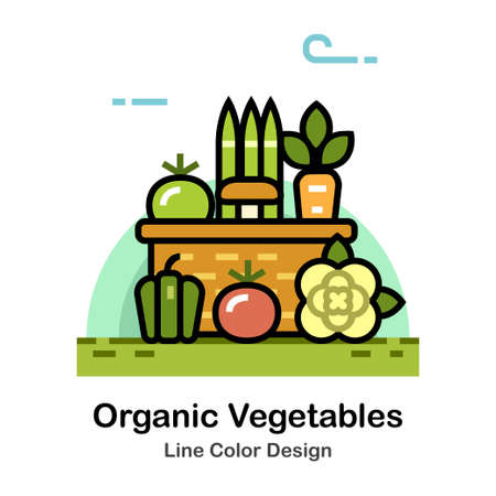 Vegetables in the basket In Line Color Design illustration