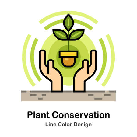 Hands covering seedling In Line Color Design illustration Ilustrace
