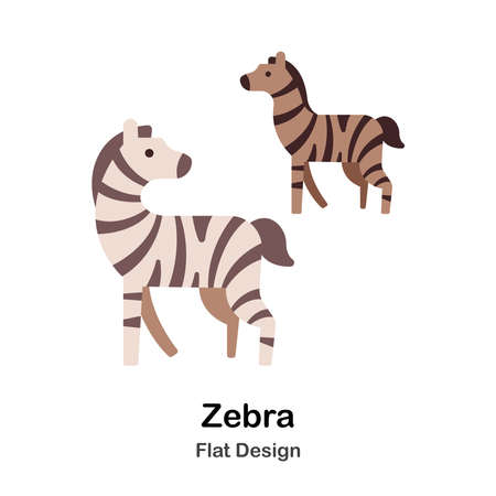 Zebra flat illustration