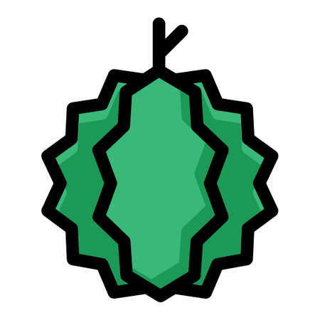 A durian vector illustration in line color design