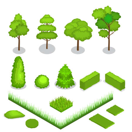 Isometric vector Trees 3d illustration.Concept trees icon.