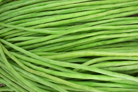 row of fresh green yard long beans photo